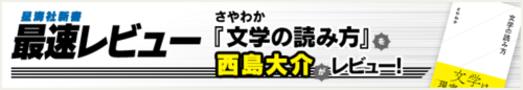 【星海社新書最速レビュー】「文学」の正体は「空洞」だった(レビュアー:西島大介)