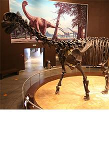 「草食恐竜」なんていない? 古生物学から見る、科学報道の不確性