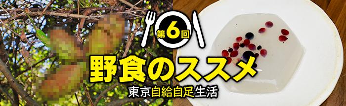 第6回:デザートだって野食で賄える! 秋の実りで自家製アフタヌーンティーセット