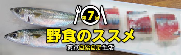 第7回:新木場秋のサバ祭り!? 鮮度抜群・東京湾奥青物御膳を作ろう!